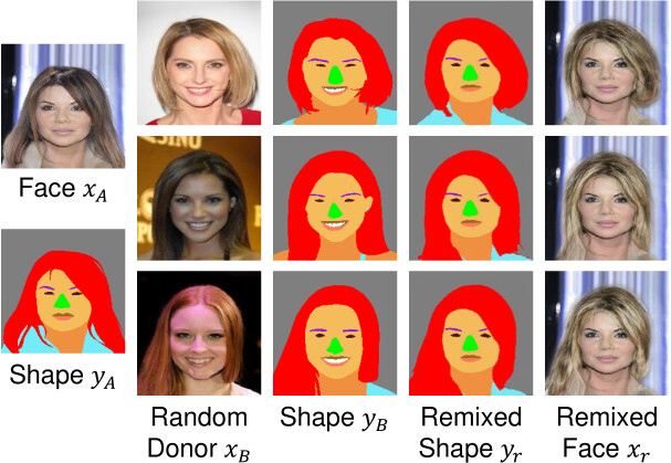 FaceShapeGene: A Disentangled Shape Representation for