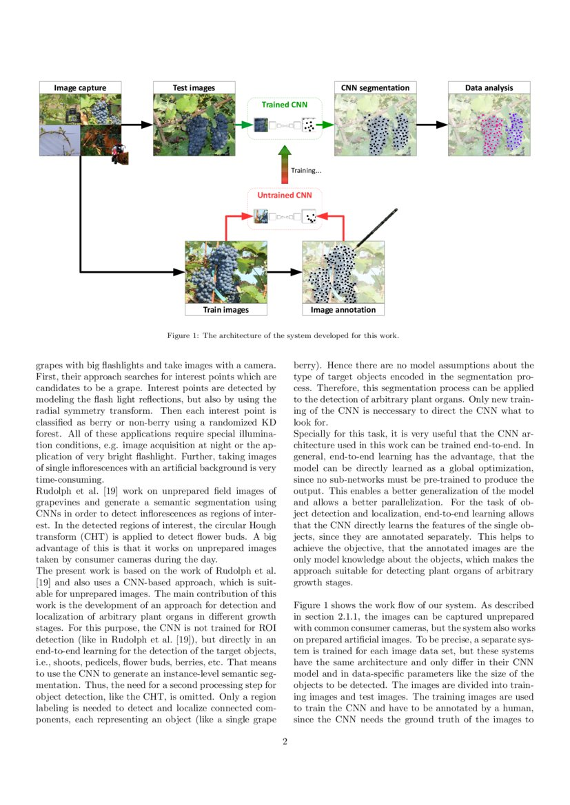 An Adaptive Approach For Automated Grapevine Phenotyping